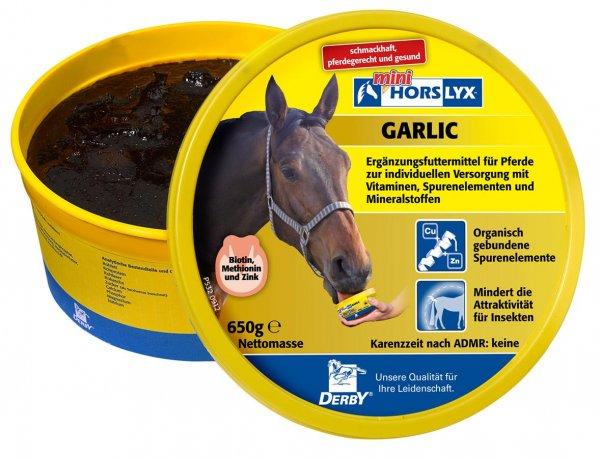 Derby® Horslyx sliksten til heste, Hvidløg, 650 g