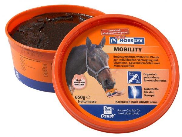 Derby® Horslyx sliksten til heste, Mobility, 650 g